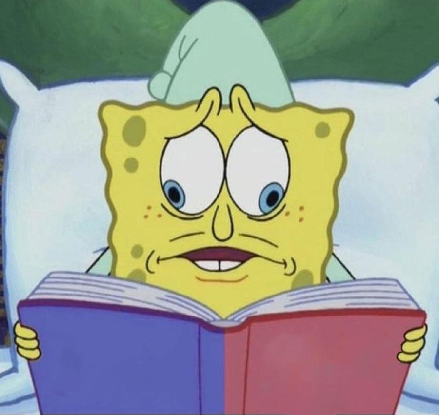 Spongebob Divided Book