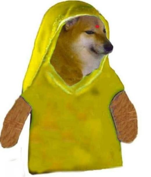 cheems meme template in yellow saree
