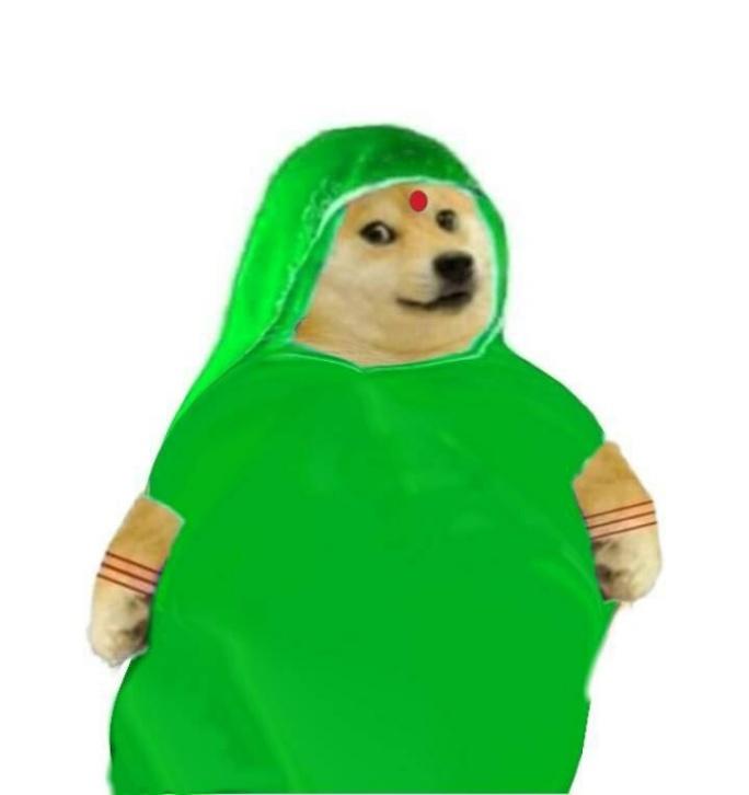 doge in green saree female meme templates