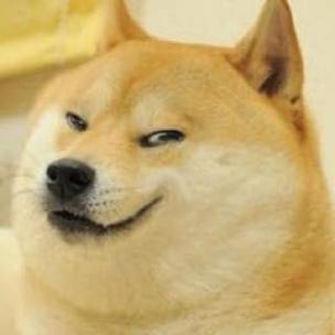 doge making face meme template