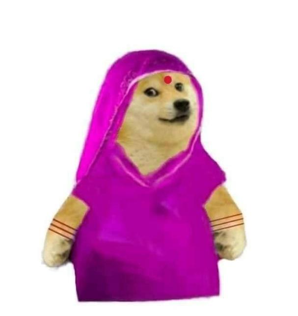 doge mom wearing saree female meme template