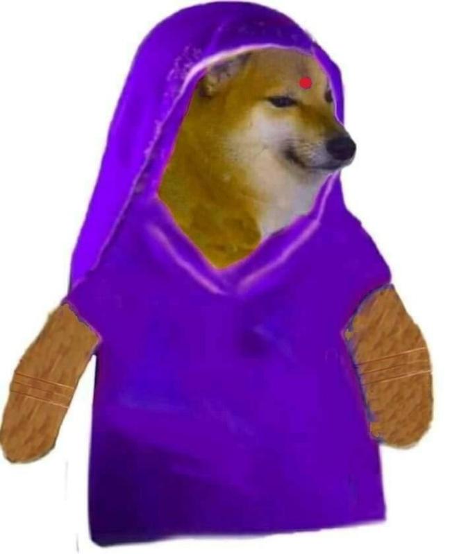 female cheems in saree meme template