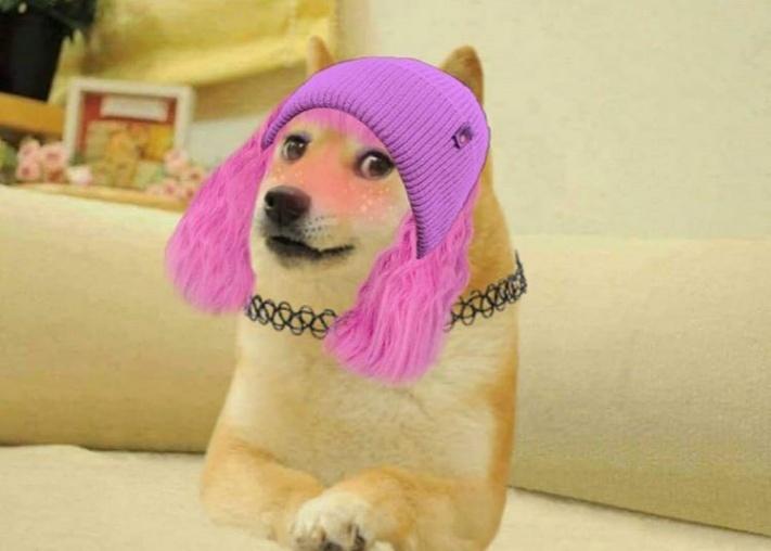 female doge girl pink hair meme template