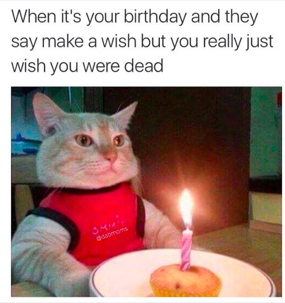 when its your birthday meme happy birthday