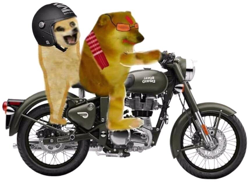 cheems on bike with doge meme template