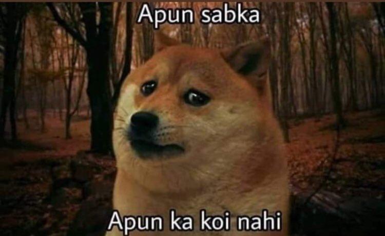 doge in a forest apun sabka apun ka koi nahi