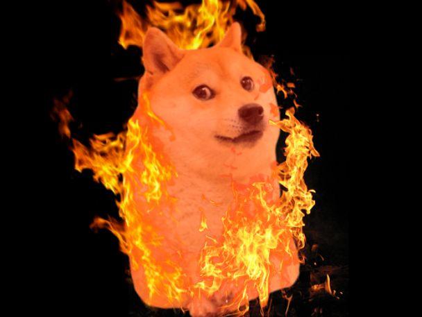 doge in fire meme template