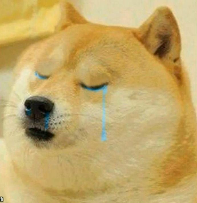 doge shedding tears meme template