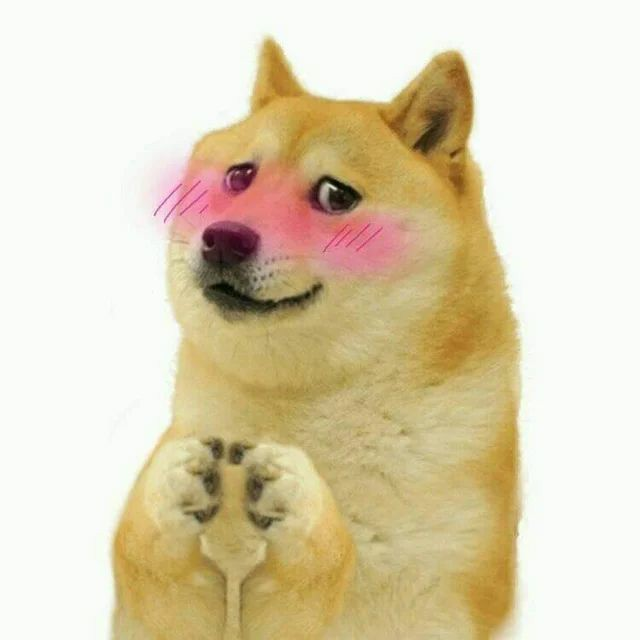 doge wholesome meme template